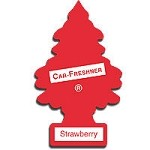 Car Freshner Trees Assorted Singles 24 Count